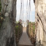 Swinging Bridge at Palawan